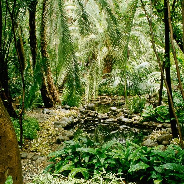 Visita Guiada Jardin Botanico La Concepcion Museo Carmen Thyssen